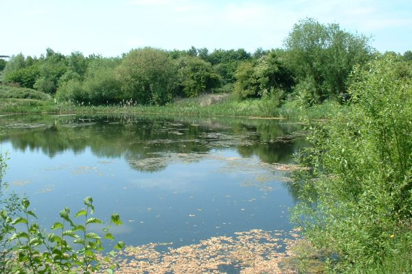 mirfield waters 014