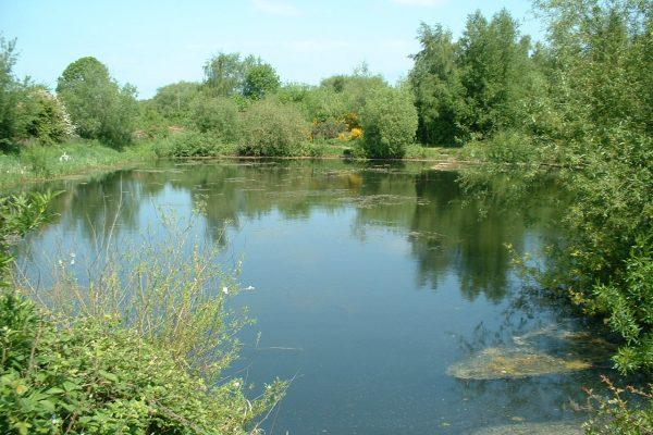 mirfield waters 017