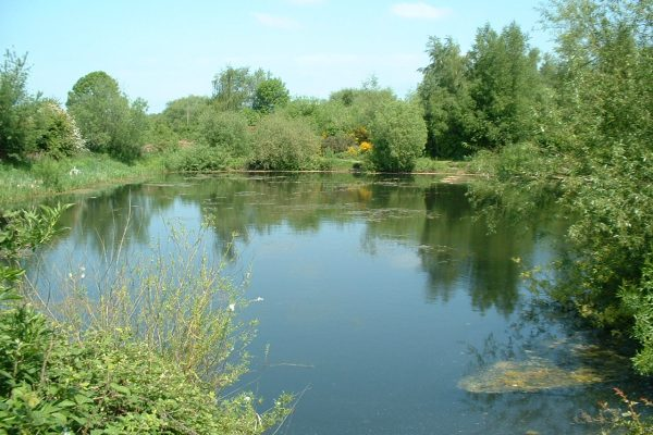mirfield waters 018