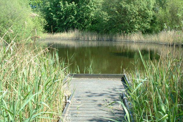 mirfield waters 2 001