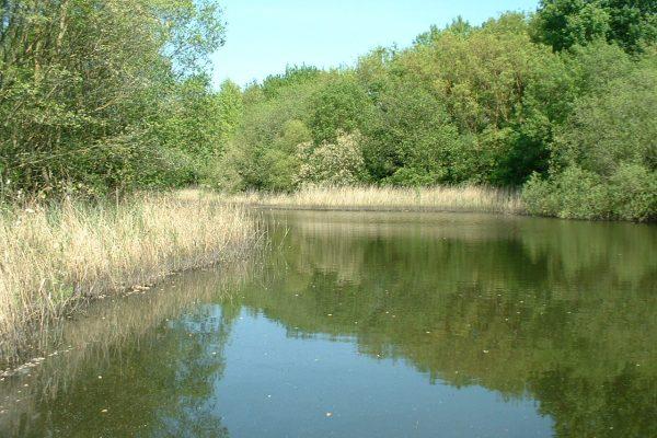 mirfield waters 2 002