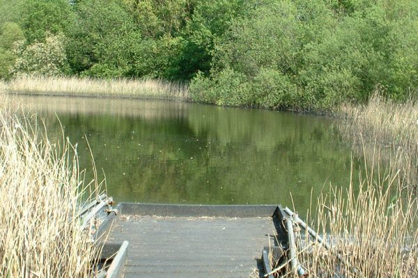 mirfield waters 2 004