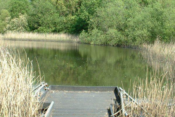 mirfield waters 2 004