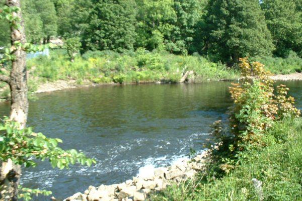 mirfield waters 2 011