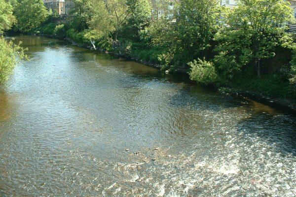 mirfield waters 2 013